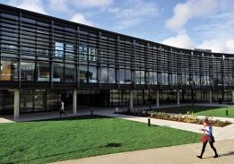 Brington Universiteti